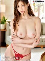 Noble Hotty TV 803